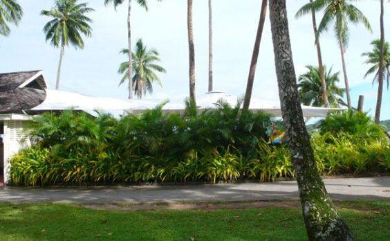 Shangri-La's Fijian Resort | Baytex - 2