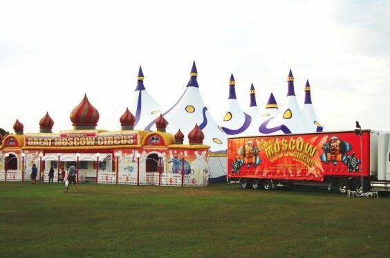 Weber Bros. Circus 2 | Baytex - 0